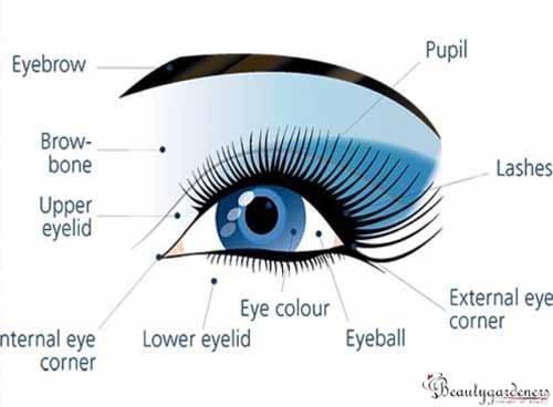 eyeshadow looks for hooded eyes