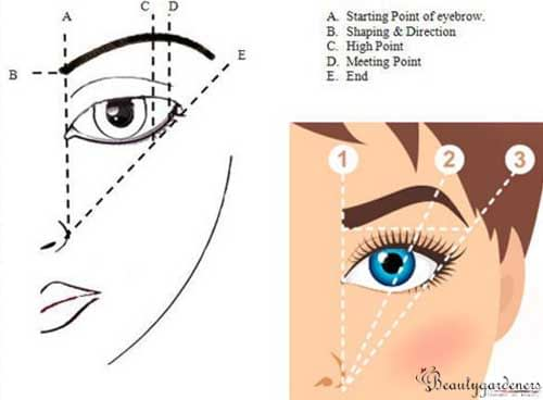 eyebrow mapping